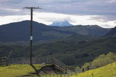 Mt Hikurangi, East Cape