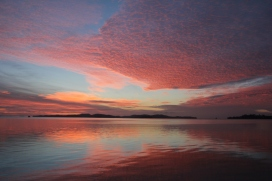 Absolutely breathtaking sunrise in Kawau Bay. 7:30am 31/03/2014