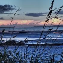 Low tide, late evening, December 2013, Kawau Bay