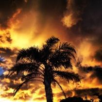 Fire in the Western Sky. Sunset at Kawau Bay, February 2014