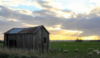 New Zealand Farm shed, Rangitikei