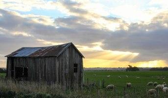 New Zealand Farm shed, Rangitikei