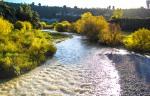 Autumn Manawatu River