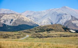 Arthurs Pass barren