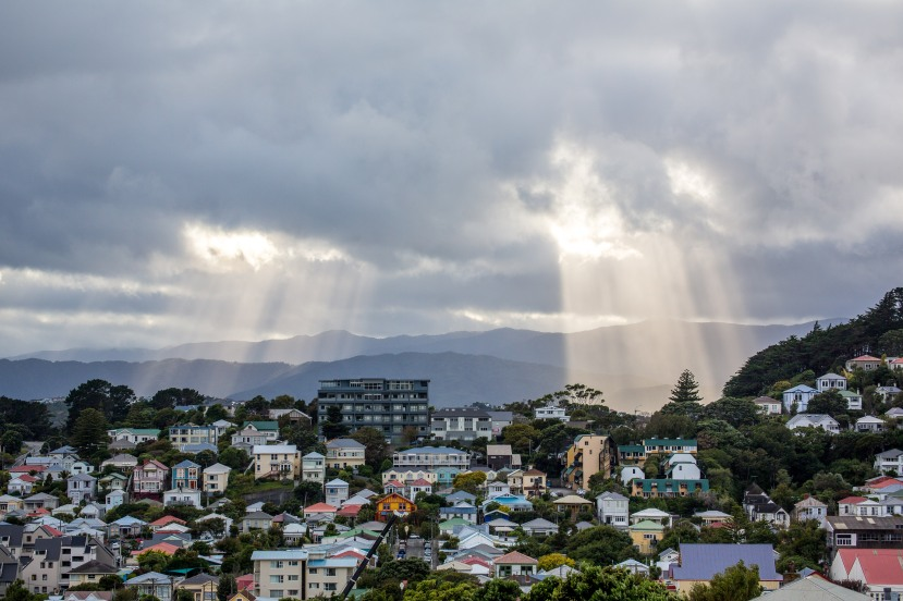 Welly Rays 3